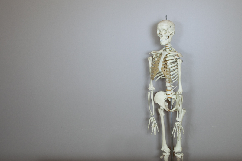 Office Skeleton